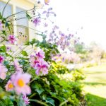 Seasonal Home Maintenance Tips for Summer in the Northwest