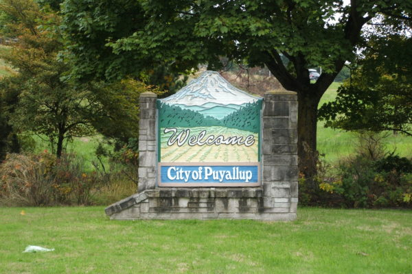 Puyallup Home Inspection